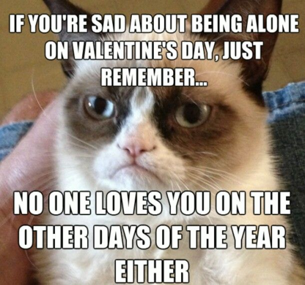 IF YOU'RE SAD, ABOUT, BEING ALONE ON VALENTINE'S DAY, JUST REMEMBER
