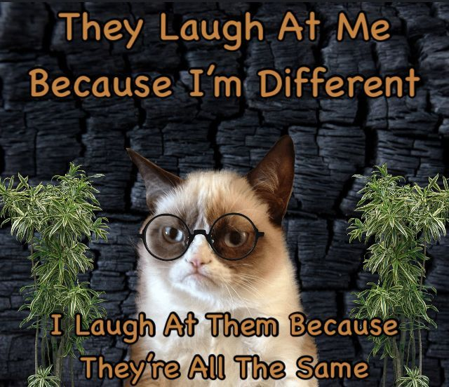 They laugh at me because l'm different