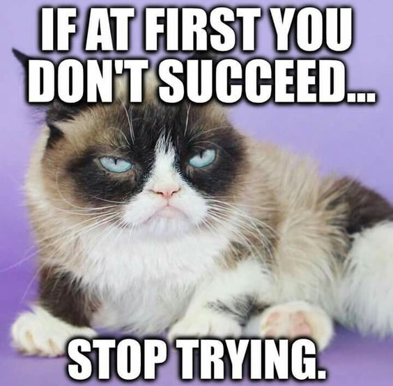 If at first you don't succeed stop trying.