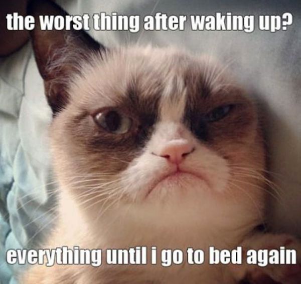 the worst thing after waking up? everything until i go to bed again