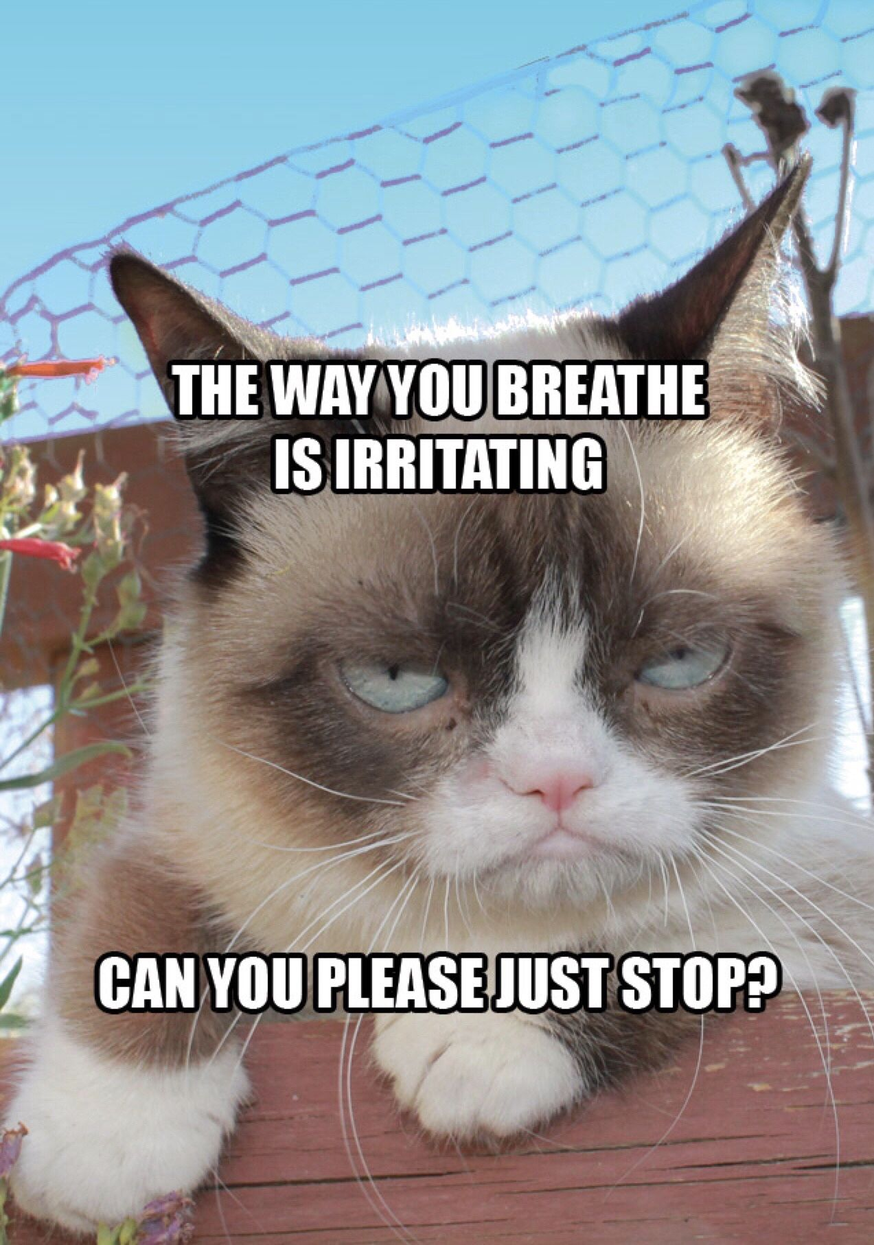 The way you breathe is irritating can you please just stop